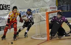 15_5_13__hockey.jpg