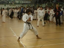 28_2_12__karate.jpg