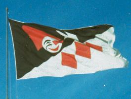 bandiera_sul_pennone.jpg