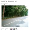 VERSILIANA_1