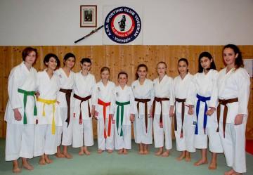 2_4_15_ Karate
