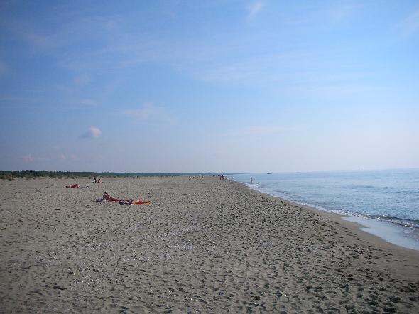 Viareggio bagnini alla lecciona nei fine settimana noitv - Alla colorazione della spiaggia ...