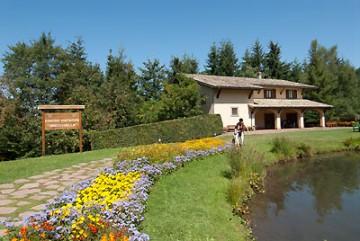 Vedute del centro accoglienza e museo - Parco dell'orecchiella con fiori, animali imbalsamati del museo, prati, montagne acqua e altro