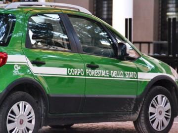 corpo_forestale_dello_stato_auto_2