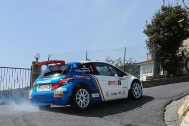 9_4_16_ Peugeot 208