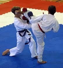 26_5_16_ karate