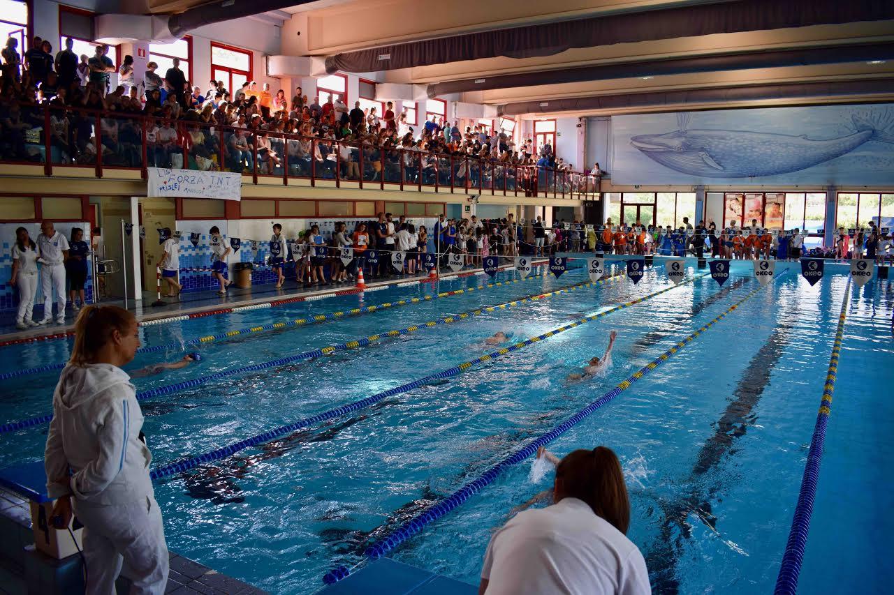 Circolo nuoto lucca vince il secondo trofeo campus maior noitv - Piscina comunale empoli ...